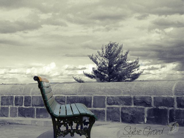 bench images