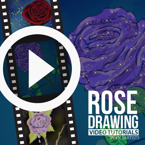 rose drawing time lapse video