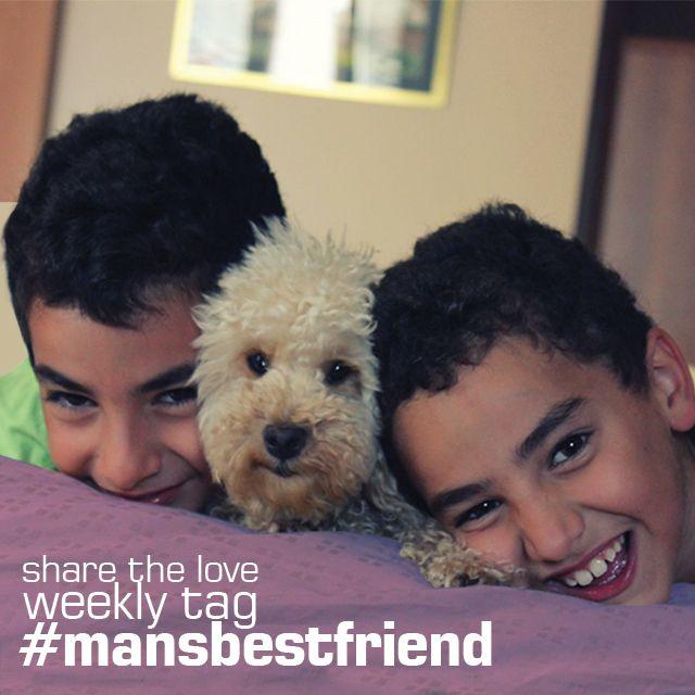 mansbestfriend photo tag