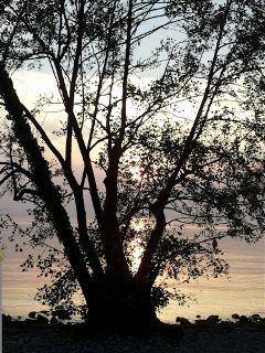 fall sunset lake photography nature