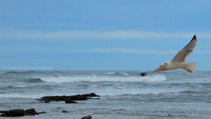 photography quotesandsayings nature emotions seaside
