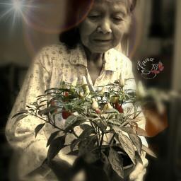 emotions sepia people grandma potrait
