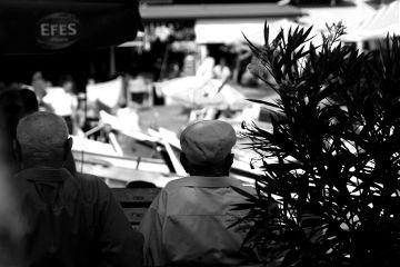 blackandwhite holidaydeco pencilart photography sepia