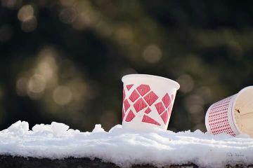 snow winter white bokeh