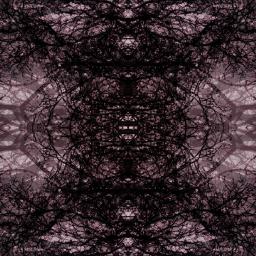 artistic trees editstepbystep collage