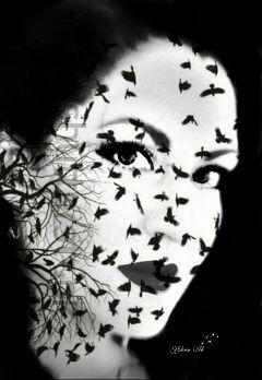 artisticselfie freetoedit ravens blackandwhite darkart